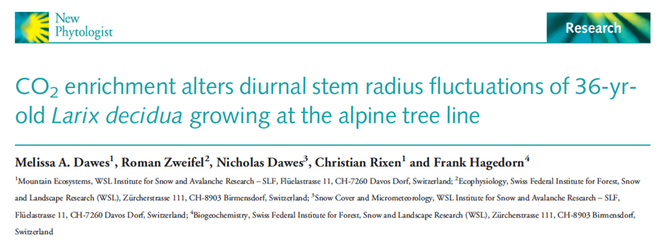Publication in New Phytologist: CO2-effect on stem radius fluctuations
