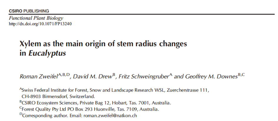 Publication in Functional Plant Biology: Xylem size changes